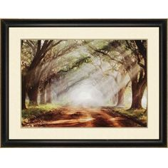 I pinned this Evergreen Plantation Framed Print from the Paragon event at Joss and Main!