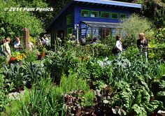 Birrell garden at Seattle Garden Bloggers Fling | DiggingDigging