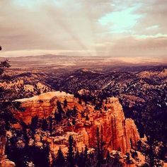 Overlooking Bryce Canyon Utah from 8000 Feet Above Sea Level (my first post) [564 x 564] [OC]