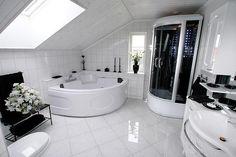 Johnny's Bathroom