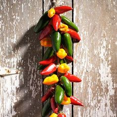 How to Dry Chili Peppers  Savor a Southwestern tradition by making a chili ristra—colorful strings of dried chili peppers. Learn how to dry chili peppers using these easy tips.  Instructions
