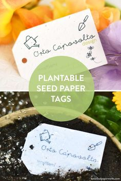 The kind of gift tags that are also a gardening gift in themselves. ☀ This product hang tag design has angled corners, but other shapes including ovals, circles, and even eggs are available too. Just add your message, name, and logo. Seed Paper, Green Business, Tag Design, Paper Tags, Garden Gifts, Hole Punch, Hang Tags, Gift Tags, Seeds
