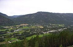 Nes is a municipality in Buskerud county, Norway. It is part of the traditional region of Hallingdal.  This is where my Great Grandparents came from.