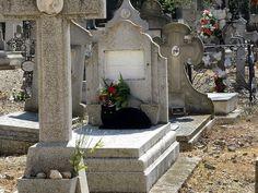 Cat from the Torrero Cemetery in Saragossa, Spain Saragoça (em castelhano e aragonês Zaragoza) é um município e a capital da província de Saragoça e da comunidade autônoma de Aragão, na Espanha. O município abrange uma área de 1 062,64 quilômetros quadrados, com população de quase 700 mil habitantes. É a quinta maior cidade do país.