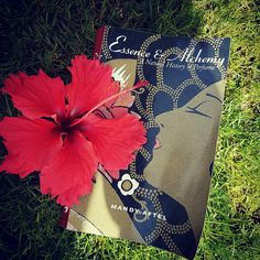 """REGRAM @Anthoscents """"Essence & Alchemy by Mandy Aftel. I love this book. It's both a useful learning guide and a fascinating novel on perfume history. #mandyaftel #book #summerbook #perfumecreation #natural #essence #alchemy #history #scent #perfume"""" -- Thank you dear Antonia for sharing such a pretty photo & kind words about my book! 💜🙏👀📗"""