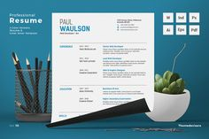 Professional Resume CV Word by ThemeDevisers on @creativemarket