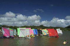 Course de yoles en #Martinique