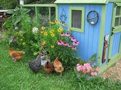 Another gorgeous chicken pen, how sweet