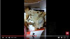 В Сети набирает популярность видео, как ребенок отравился курицей в KFC http://kleinburd.ru/news/v-seti-nabiraet-populyarnost-video-kak-rebenok-otravilsya-kuricej-v-kfc/  Неприятный инцидент произошел с семьей из штата Арканзас в США во время ужина. В Сети распространяется видео, которое сняла женщина, заметившая в своей тарелке опарышей. Во время съемки она четко проговорила все данные — дату, место и как у нее появилась эта курица. Судя по тому, что говорится в видео, семья кушала в KFC…