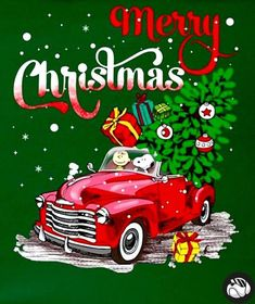 Merry Christmas: Charlie Brown and Snoopy bringing Christmas cheer in a bright-red vintage truck. Merry Christmas Charlie Brown, Peanuts Christmas, Christmas Truck, Charlie Brown And Snoopy, Christmas Cats, Christmas Humor, Xmas, Christmas Bible, Funny Christmas Wishes