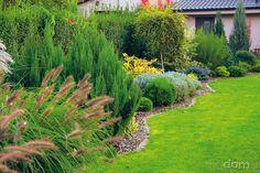 Z obyčajnej úžitkovej záhrady si za domom spravili takúto nádheru – galéria | Môjdom.sk