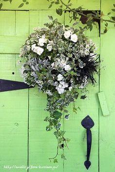 白いビオラの壁掛けハンギング|フローラのガーデニング・園芸作業日記