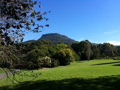 울런공 식물원(Wollongong Botanical Gardens,  NSW, Australia)
