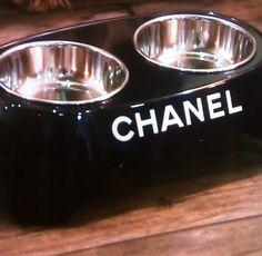 Kyle Richards' Chanel Dog Bowl & Coffee Mug   Big Blonde Hair : Big Blonde Hair http://www.bigblondehair.com/real-housewives/rhobh/kyle-richards-chanel-dog-bowl-coffee-mug/
