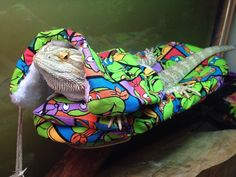 ��BEARDED DRAGON NINJA TURTLE PRINT ATTACHABLE RESTING BED COVERS SIZE LARGE��  | eBay