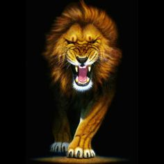 """Like a provoked lion, what if we, through the power invested in us in Jesus Christ, began to make our enemy utter the words """"Oops, maybe I shouldn't have done that"""" when we are prodded by the circumstances of life? Go to http://faithsmessenger.com/oops-maybe-shouldnt-done/ to read the article """"Oops, Maybe I Shouldn't Have Done That"""""""