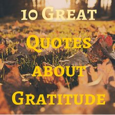 Heatherly Ever After : 10 Great Quotes about Gratitude to Share on Thanksgiving
