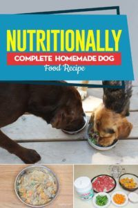 Recipe Nutritionally Complete Homemade Dog Food Dog Food