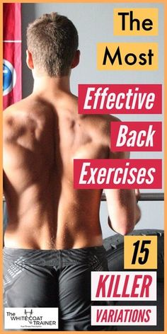 Improving your posture begins with training the appropriate muscles of the back. This article includes 15 great back exercises to reclaim your body! Back Workout Routine, Back Workout Men, Back Workout At Home, Good Back Workouts, At Home Workouts, Killer Back Workout, Workout Plans, Gym Plans, Workout Tips