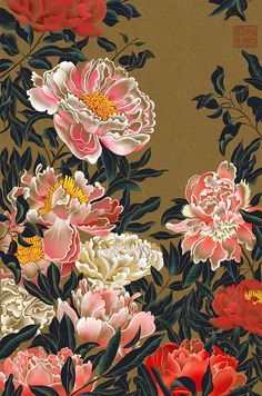 Peonies drawing floral