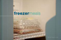 Sweet N' Sour Chicken (freezer meal recipe)