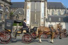 Sposi per un giorno ad Amsterdam