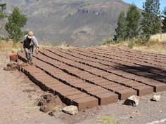 Earth Building: Adobe Brick and Compressed Earth Blocks