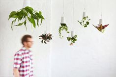 If It's Hip, It's Here: A New Perspective on Hanging Plants. Introducing Boskke Sky Planters.