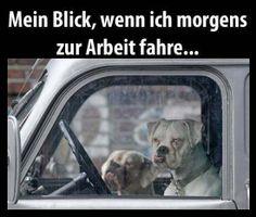 Morgens, 7 Uhr in Deutschland - Fun Bild | Webfail - Fail Bilder und Fail Videos