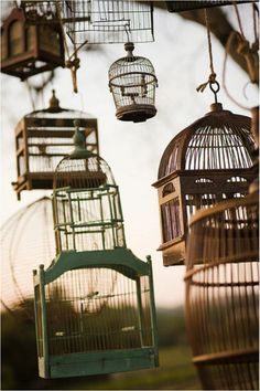 Vintage Bird Cages   Second Shout Out    http://www.secondshoutout.com/blog/vintage-bird-cages