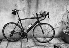 100% pure #joy! #lovemyride  #AATR #allabouttheride #cycling #bicycling #lovecycling #roadcycling #roadbikes #ridehappy #cannondale #goodgreenday #fulcrumwheels #dedazero #cycletography #snapseed #blacknwhitephotography