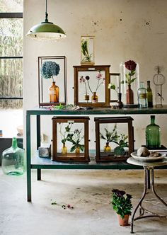 an eclectic antique bottle collection