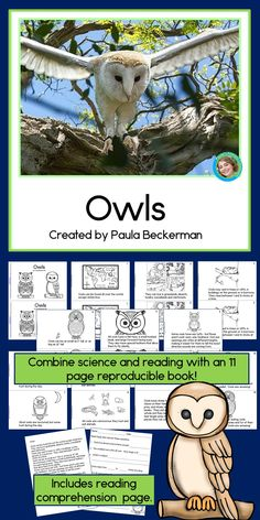 Owls Non-Fiction Guided Reading Book Reading Groups, Guided Reading, Owl Facts, Reading Comprehension Worksheets, Camping Theme, Science Activities, My Teacher, Booklet, Nonfiction