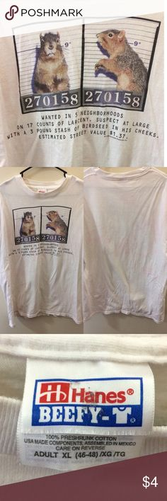 """Wanted squirrel Top * Fair condition still has lots of life left. There is a faint pink-ish/red splotch across the back, but it's very faint at first sight. Also there are some small speckles on the back, at the top, near the collar. (Both shown in last pic.)  * Size Adult XL.  * Short sleeves.  * Measurements: * Chest (pit2pit): 22"""" * Length: 26"""" vintage Shirts Tees - Short Sleeve"""