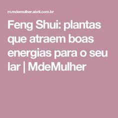 Feng Shui: plantas que atraem boas energias para o seu lar   MdeMulher