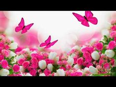 bunch of roses and tulips flowers with butterflies Wall Mural Flower Background Wallpaper, Butterfly Wallpaper, Love Wallpaper, Flower Backgrounds, Wallpaper Backgrounds, Phone Backgrounds, Wallpapers, Beautiful Butterflies, Beautiful Roses