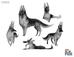 Juliaon Roels - some dogs… all these images are © Universal...