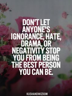 Don't Let Anyone's Ignorance, Hate, Drama, Or Negativity Stop You From Being The Best Person You Can Be