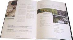 Fundesem. Folleto MBA. A4. 32 págs. Alicante. 2002.