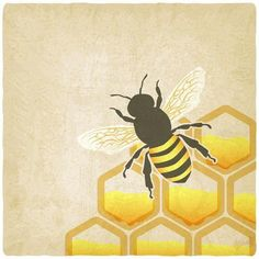 Grand Opening of our Etsy Shop! Browse unique items from BeeTheLightCandlesUS on Etsy, a global marketplace of handmade, vintage and creative goods. Bee Painting, Sign Painting, Rock Painting, Bee Quotes, Bee Drawing, Bee Honeycomb, Bee Creative, Bee Art, Shops