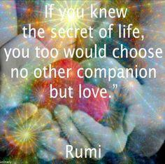 Choose love.. -Rumi