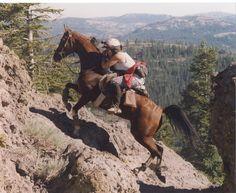 Mary Ruebush, of Black Bear Arabians #endurance riding