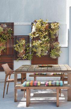 """Placas ripadas, forradas de bromélias, formam um jardim vertical na parede do terraço. No canto oposto, o deck de 21 m2 foi montado com ripas de cumaru de larguras irregulares (5, 10 e 15 cm). """"A elevação de 40 cm permitiu uma vista melhor da praia"""", explica Marina."""