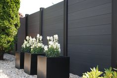 Horizontal black fence, black square planters, gravel