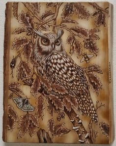 Big Owl (Maple cm. 42 x 34 )