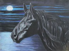 The Scent Is Fresh - Jeanne Fischer #blackhorse #horse #equine
