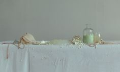 an organic (still-life) on Behance