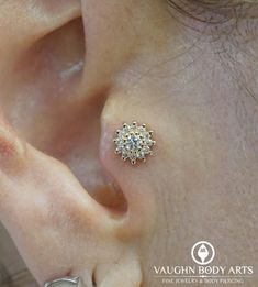 We absolutely love doing tragus piercings. Our client Elizabeth has an incredible tragus that is perfectly suited for a piercing and some fancy jewelry. Cody got to do this piercing for Elizabeth. Inner Conch Piercing, Tragus Piercings, Body Piercing, Ear Jewelry, Jewellery, Diamond Earrings, Stud Earrings, Beautiful Roses, Absolutely Stunning