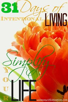 What would it mean to simplify your life? Simple living to me means slowing down to savor life because you have trimmed out the excess.