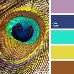 Motley, colorful palette that combines noble deep and light bright colors. Blue and brown - natural colors - are the basis of the palette. Color Schemes Colour Palettes, Blue Colour Palette, Color Combos, Paleta Pantone, Peacock Colors, Peacock Feathers, Bright Colors, Inspiration Art, Design Seeds